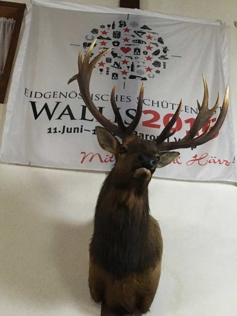 Wall-mounted Deer